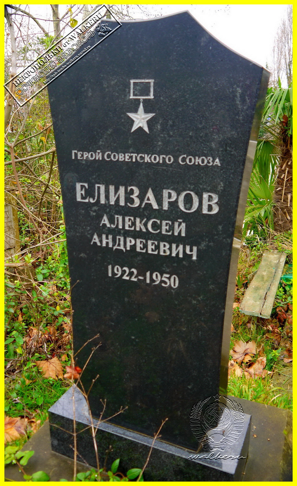 Елизаров А.А.