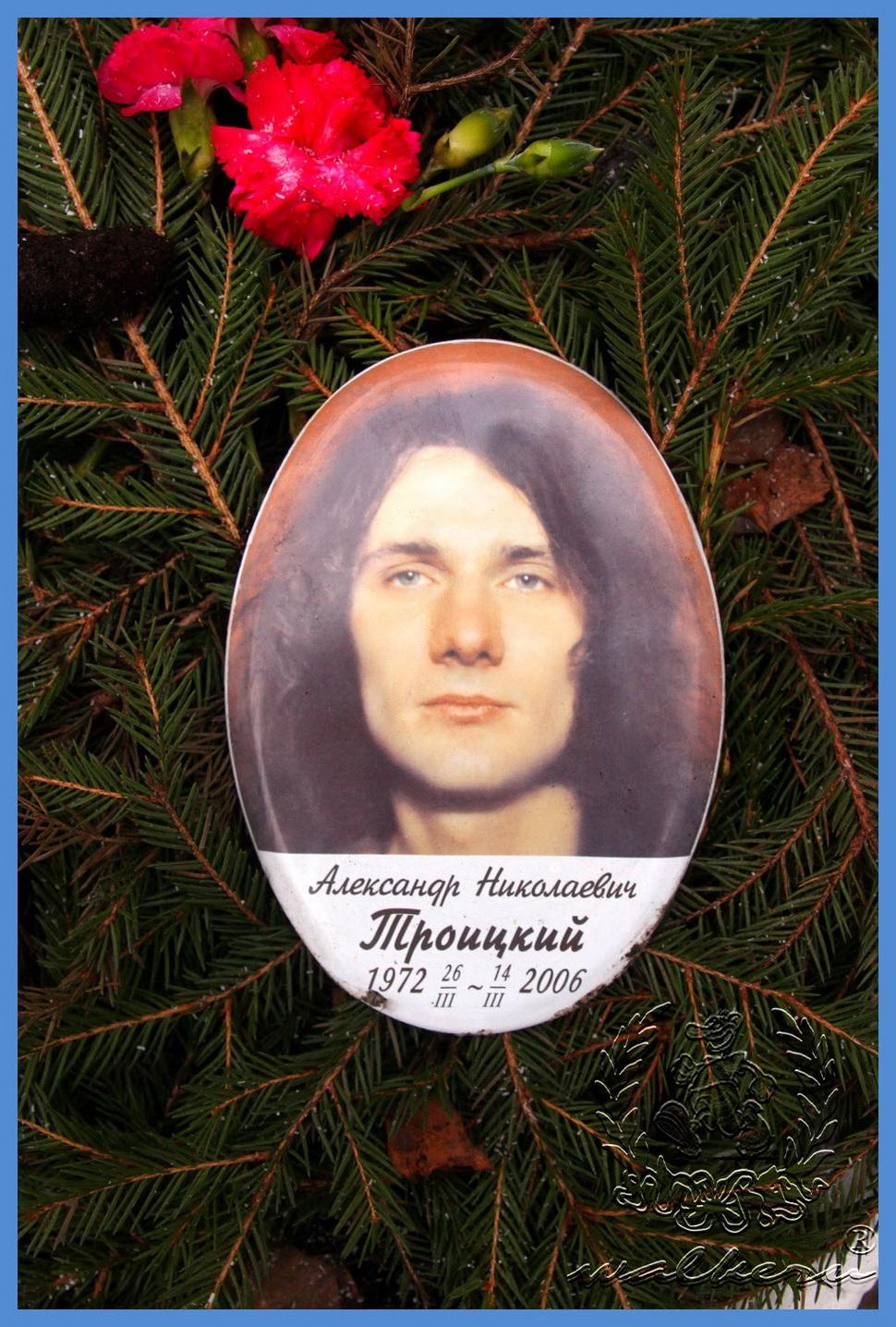 Троицкий Александр Николаевич