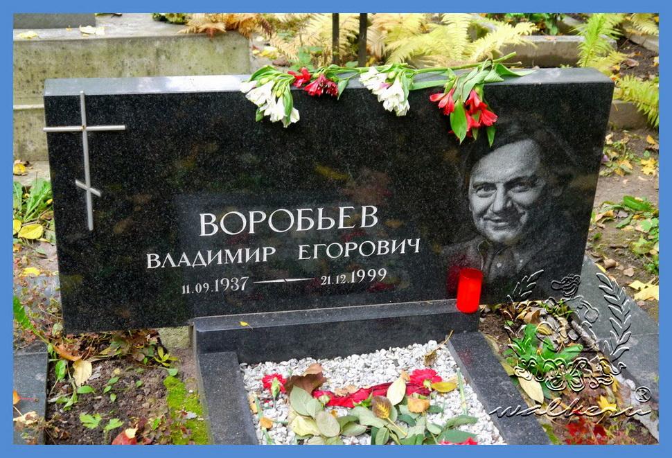 Воробьев Владимир Егорович