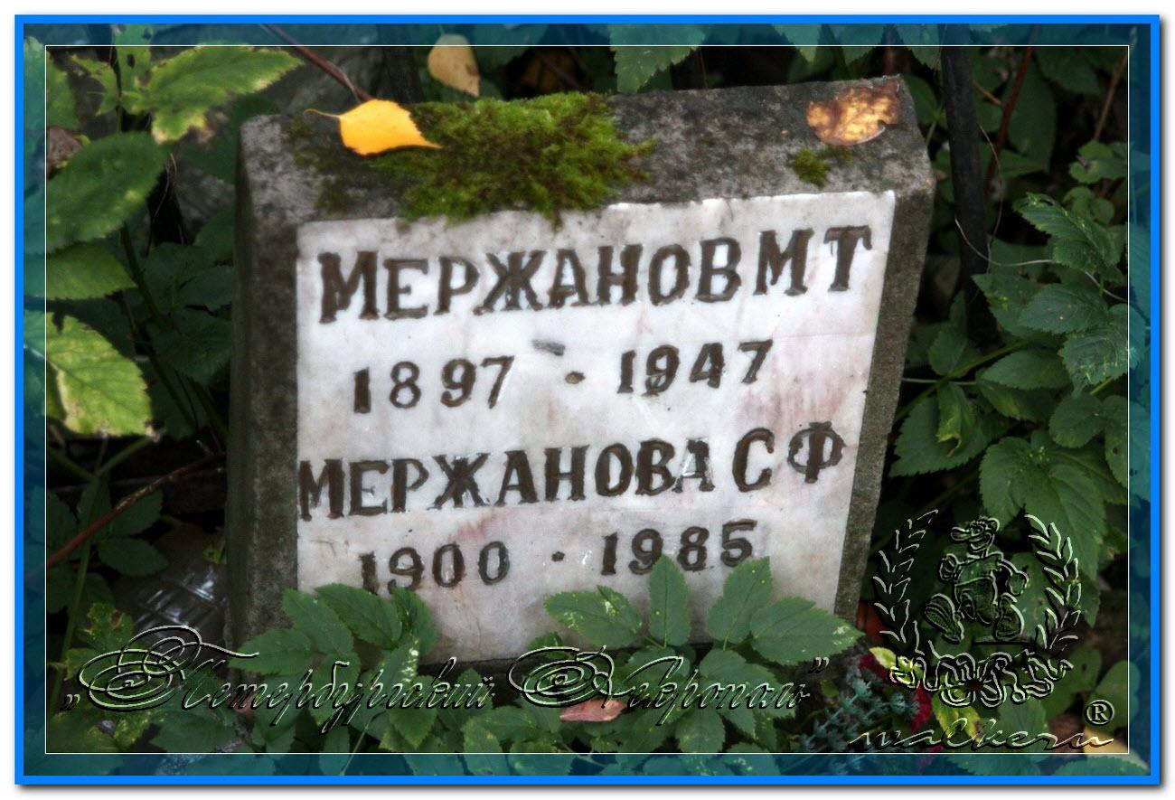© Мержанов Михаил Тарасович