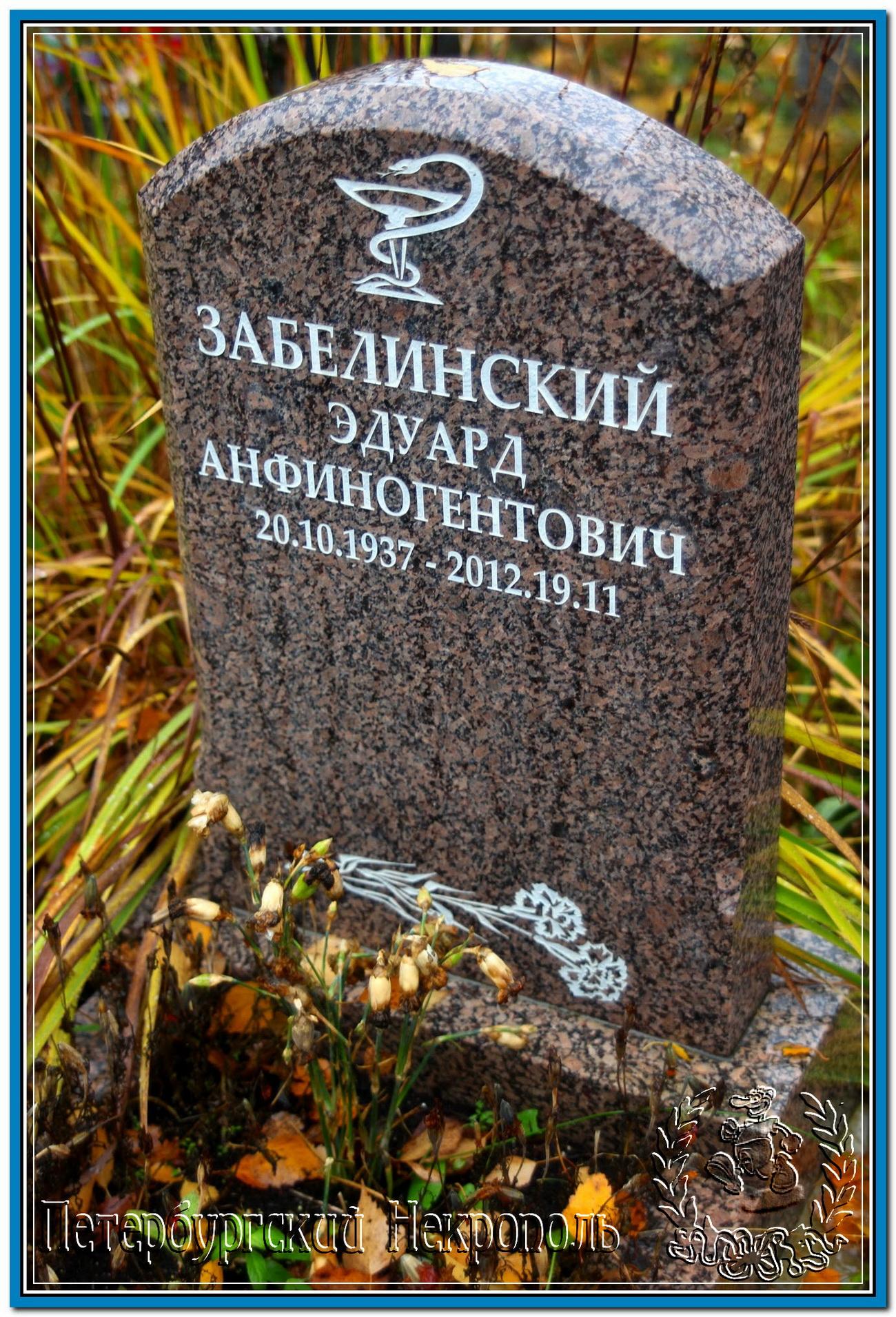 © Забелинский Эдуард Анфиногентович