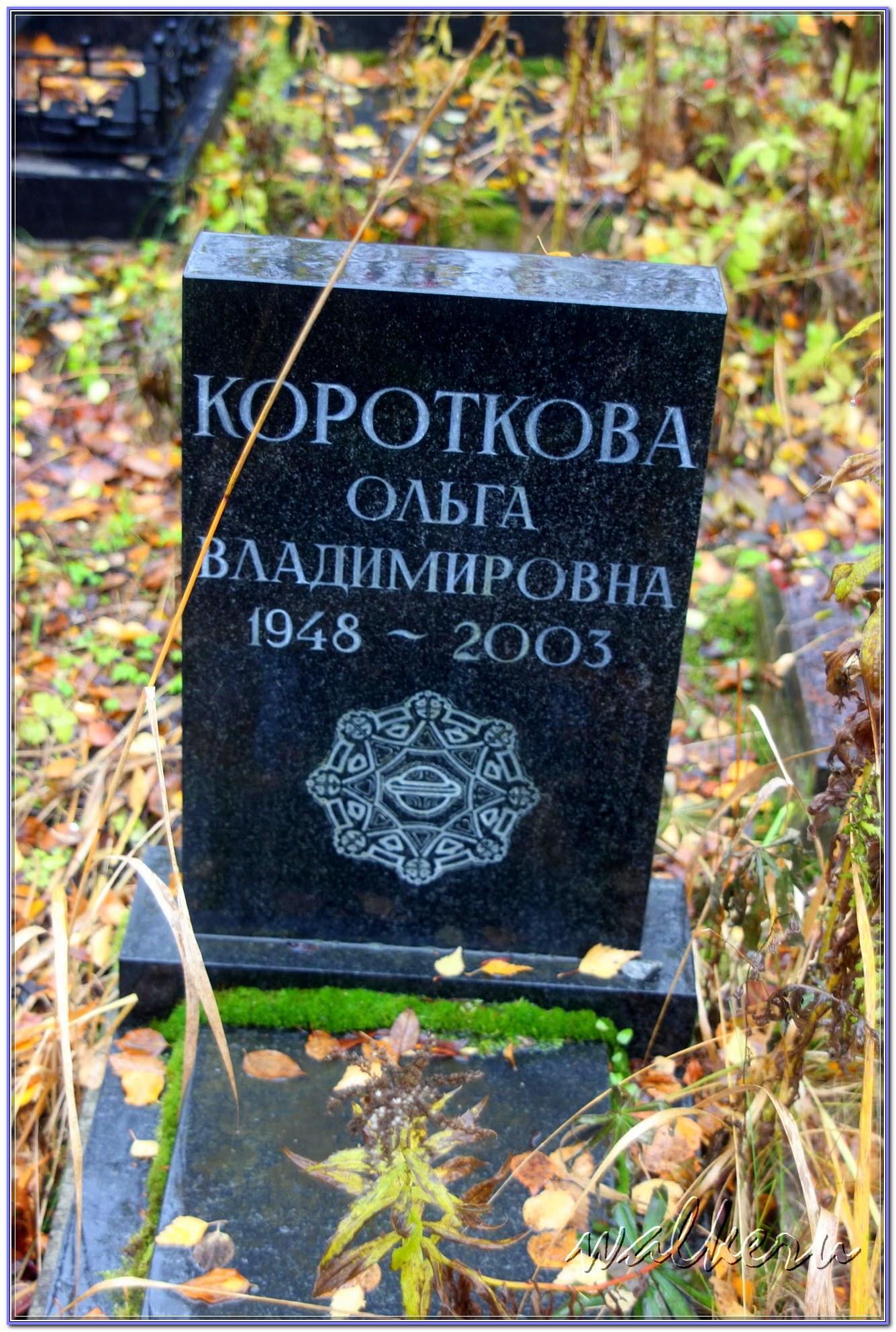 © Короткова Ольга Владимировна