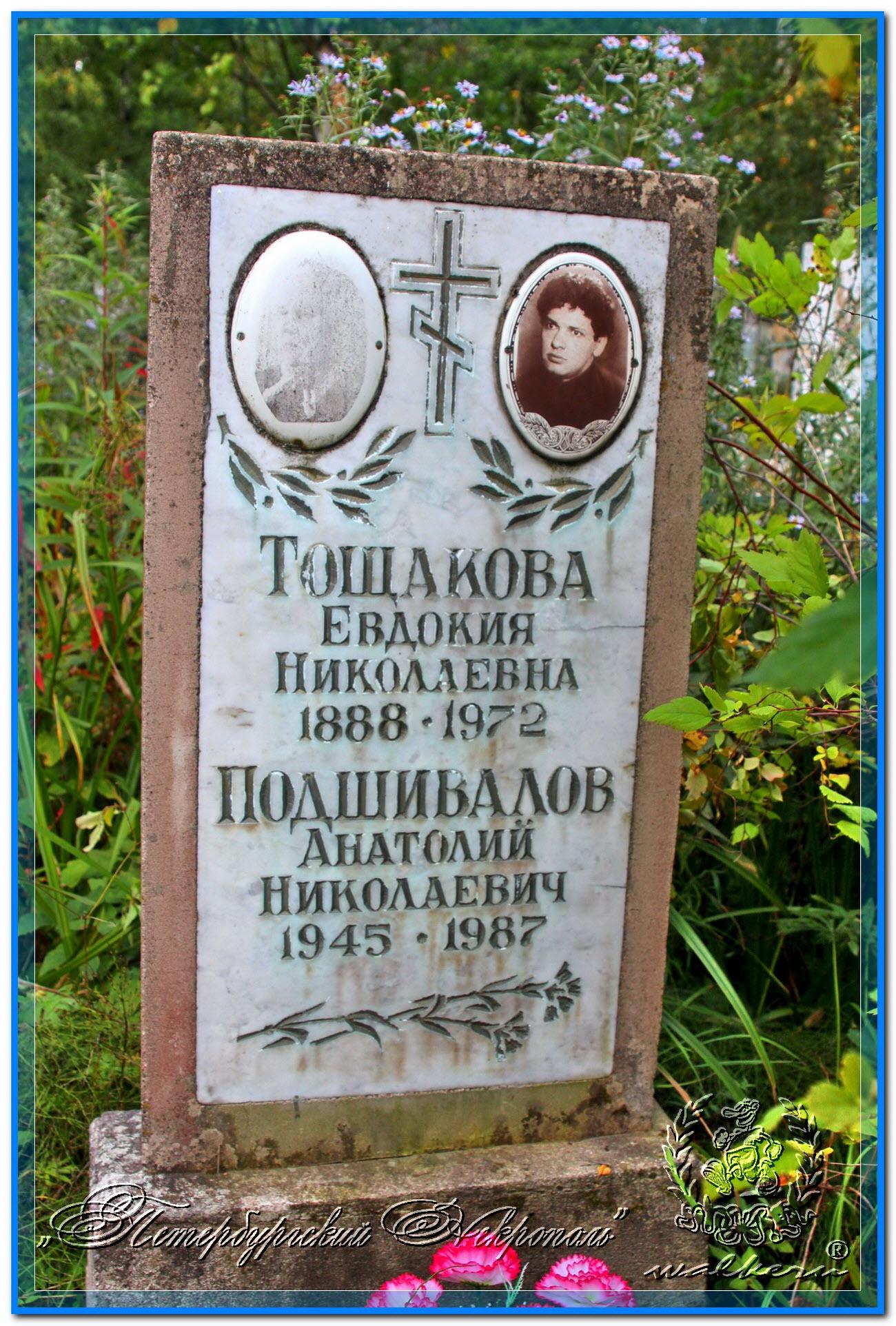© Подшивалов Анатолий Николаевич