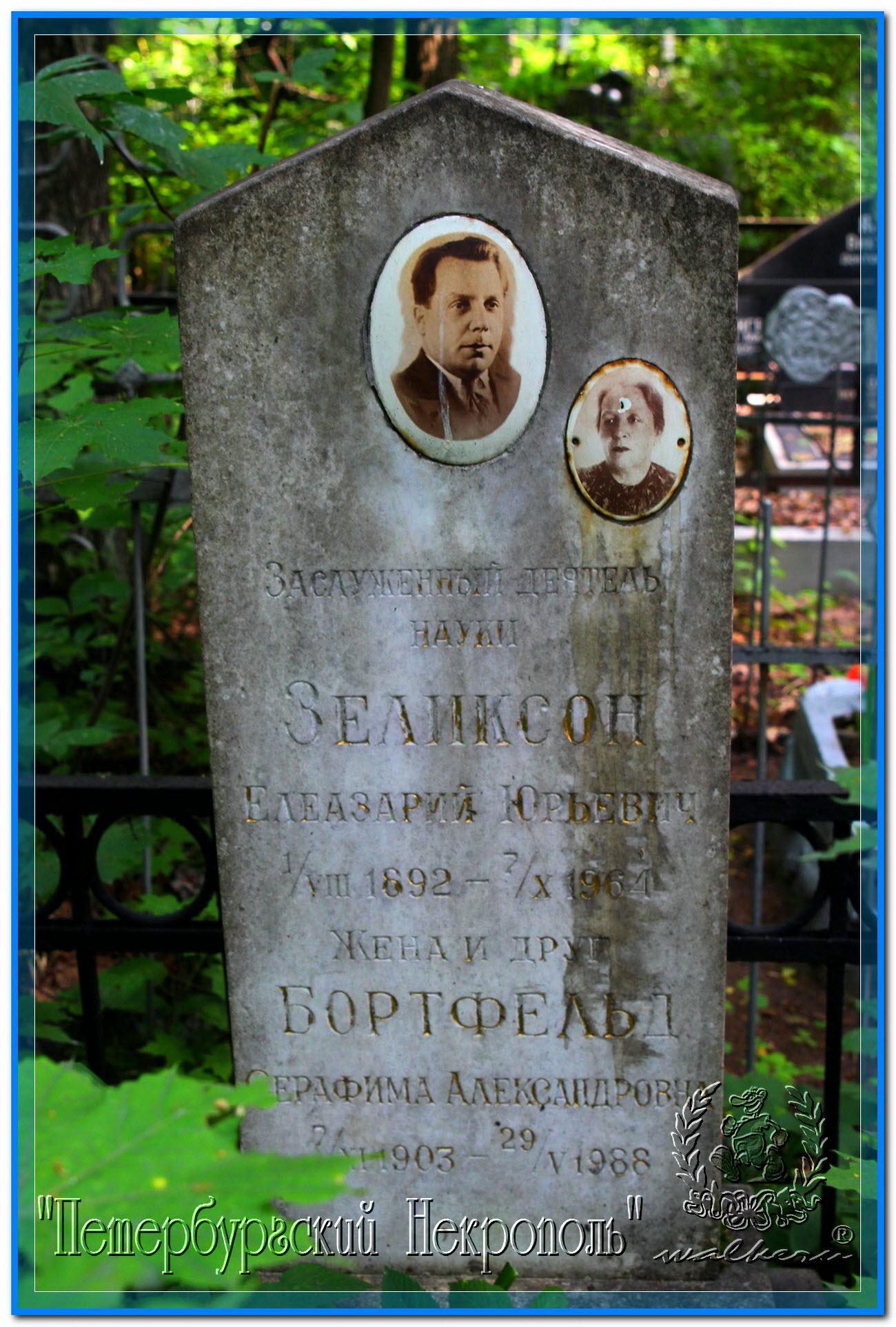 © Зеликсон Елеазарий Юрьевич