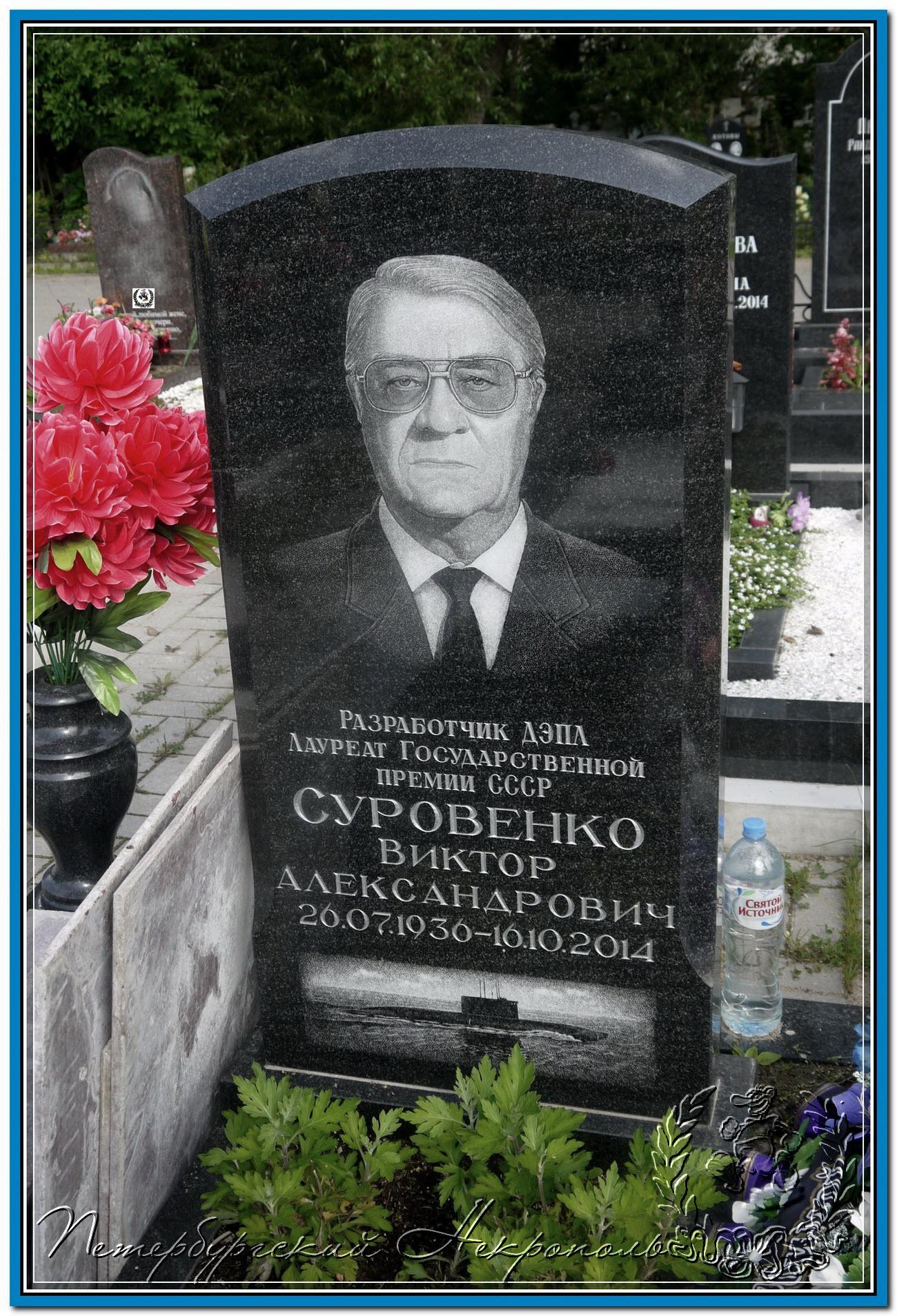 © Суровенко Виктор Александрович