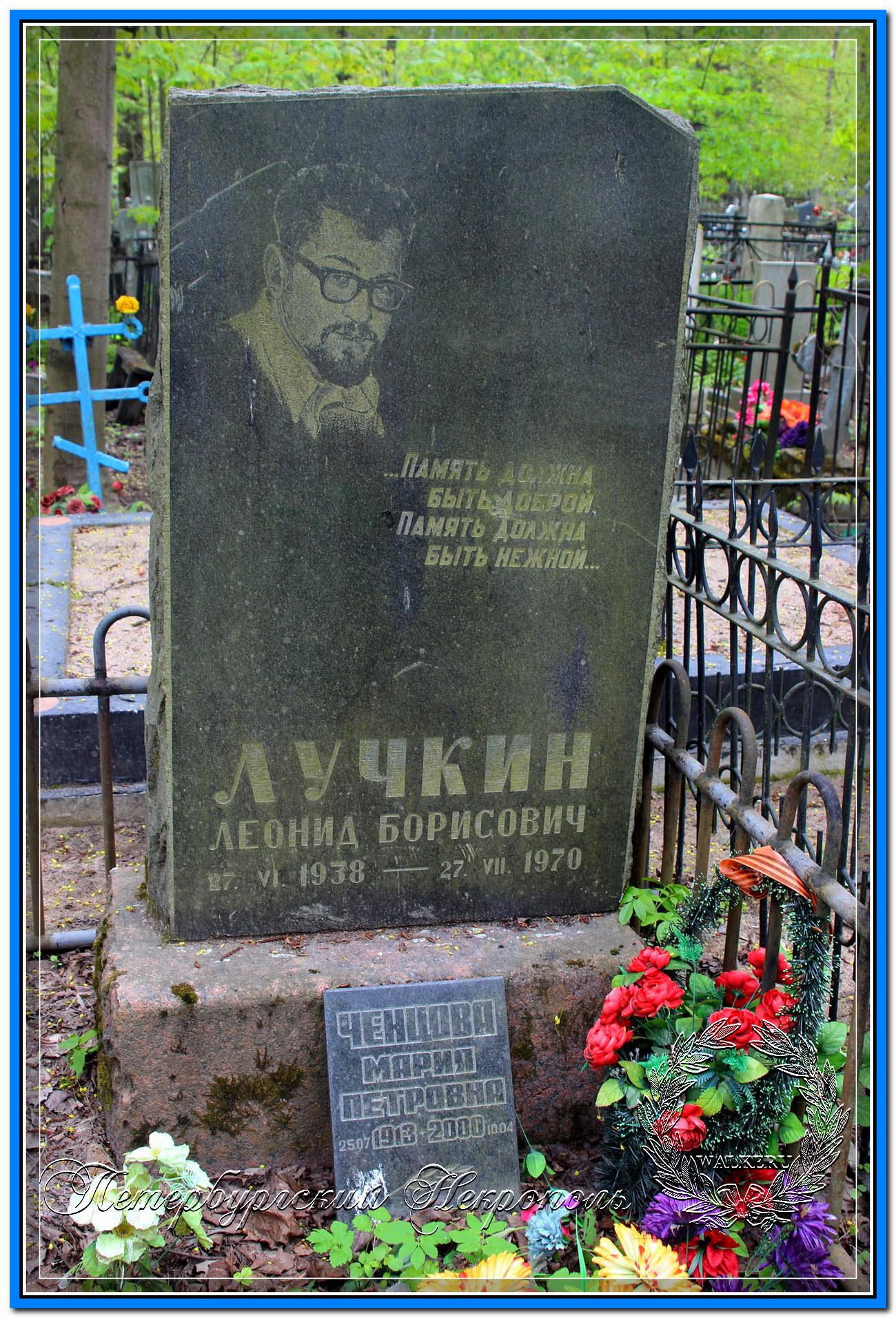 © Ширали Виктор Гейдарович