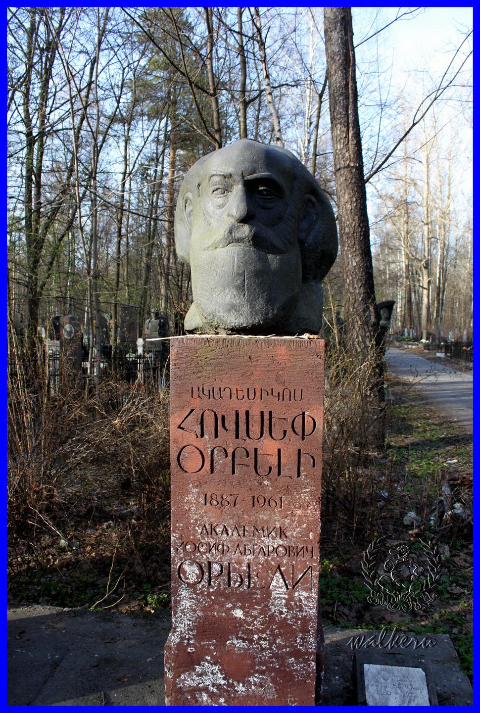 Могила Орбели И.А. на Богословском кладбище
