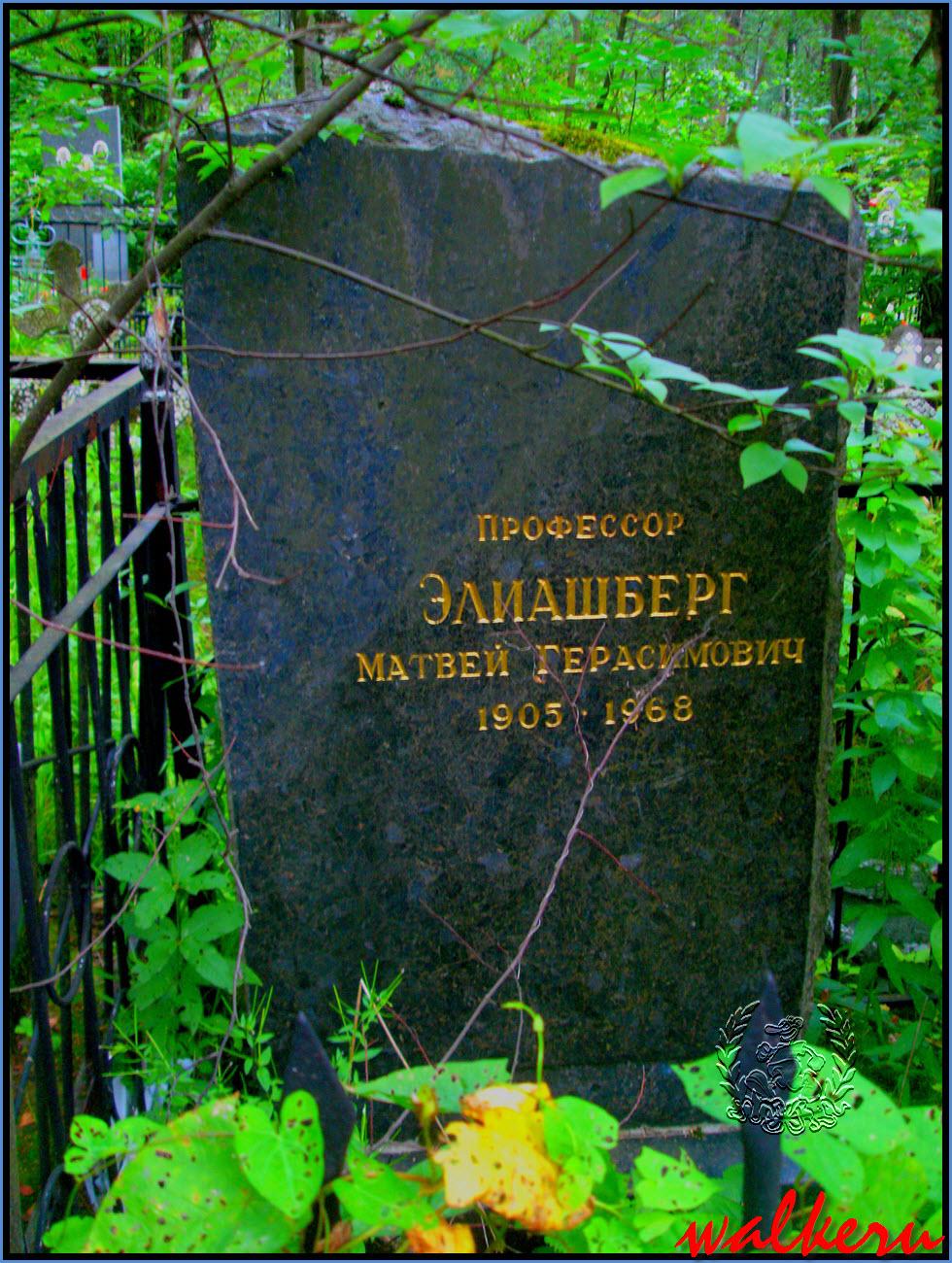 Могила Элиашберга М.Г на Большеохтинском кладбище