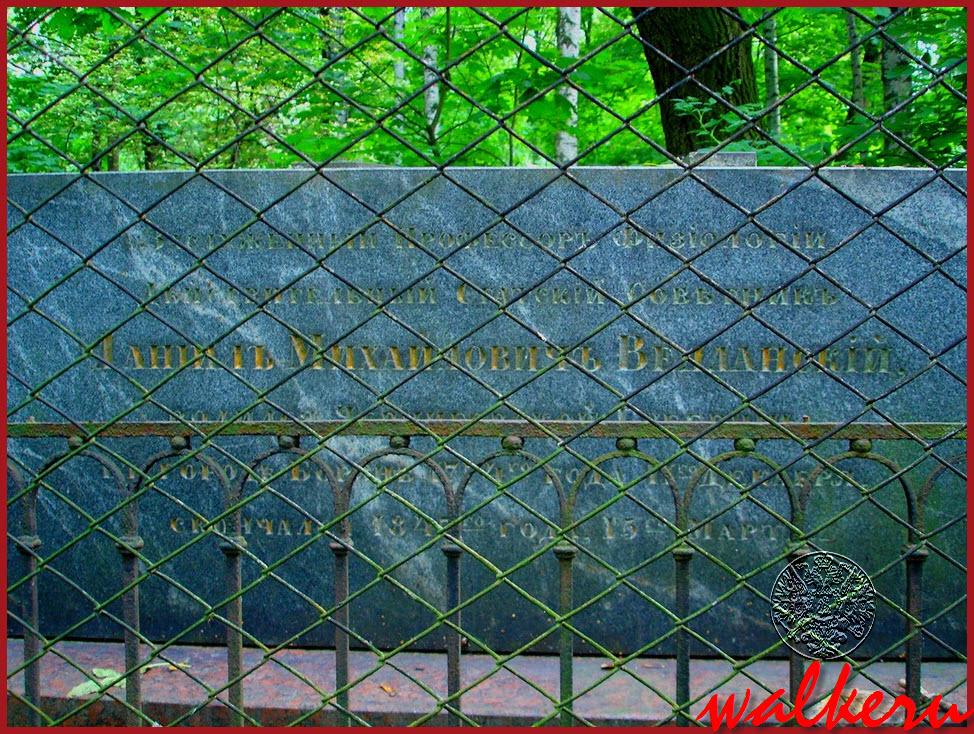 Могила Велланского Д.М. на Большеохтинском кладбище