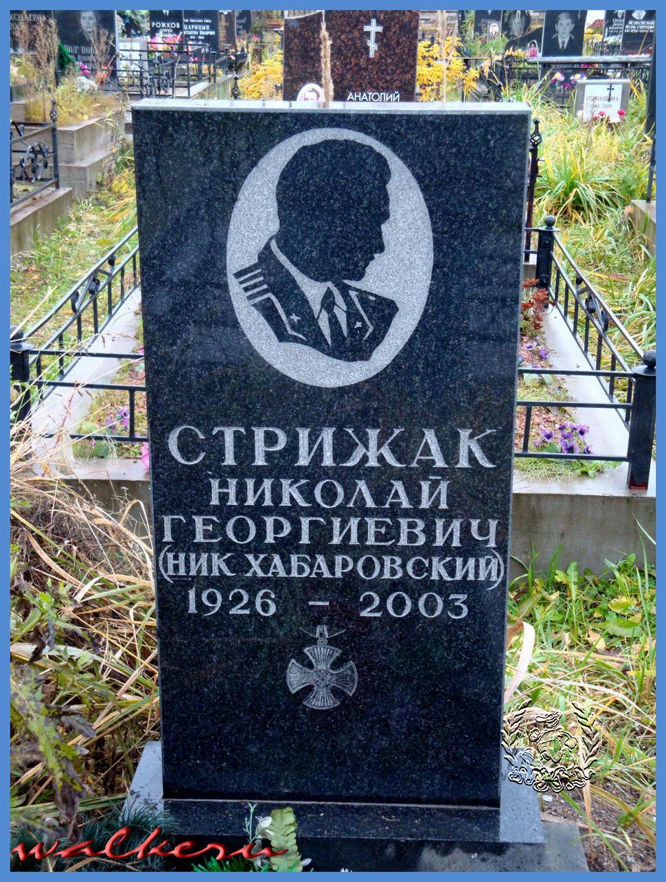 СТРИЖАК Николай Георгиевич