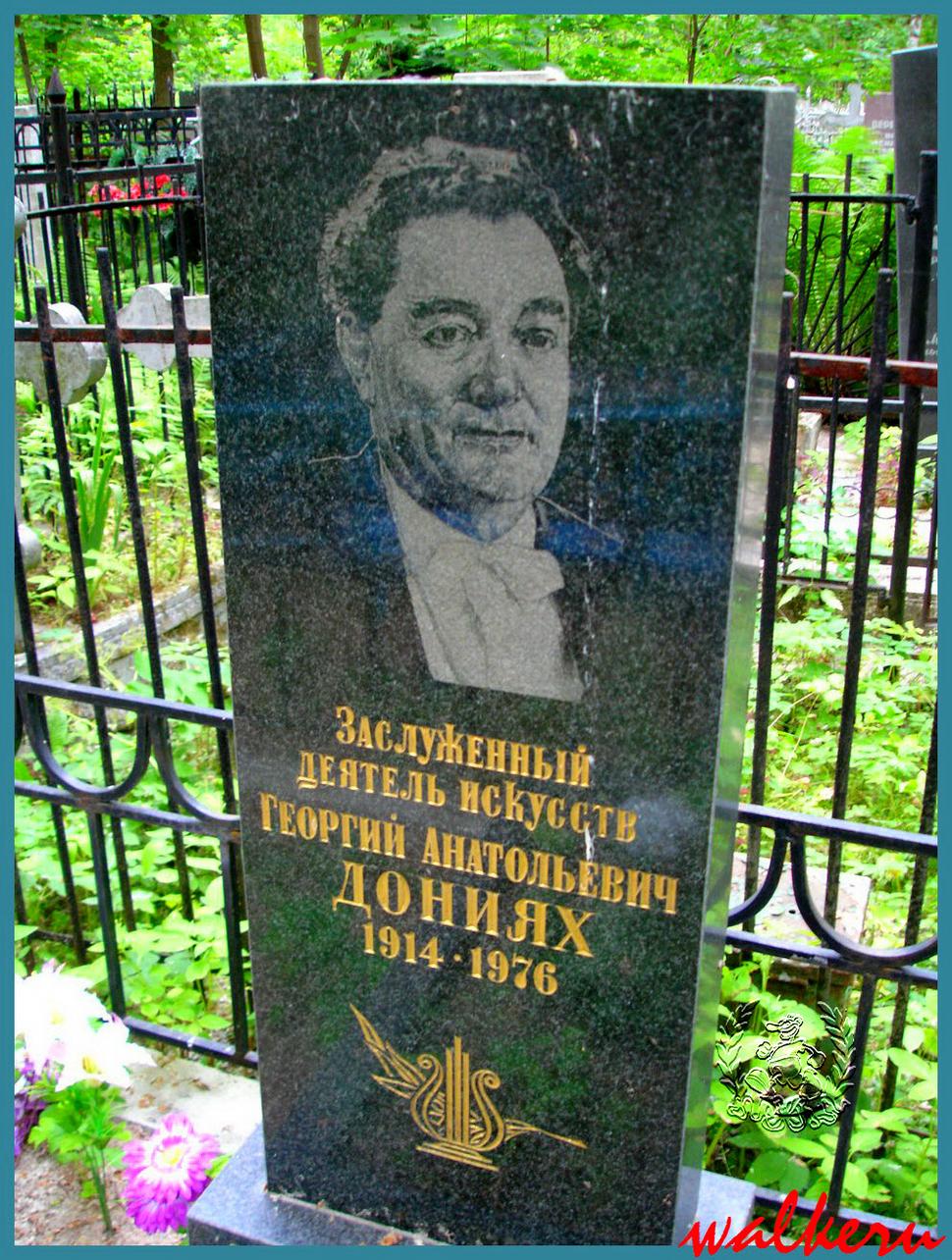 Могила Дониях Г.А. на Красненьком кладбище