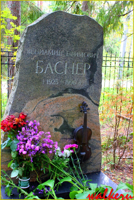 Могила Баснера В.Е. на Комаровским кладбище