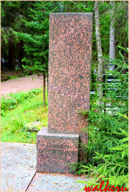 Могила Самохвалова А.Н. на Комаровским кладбище