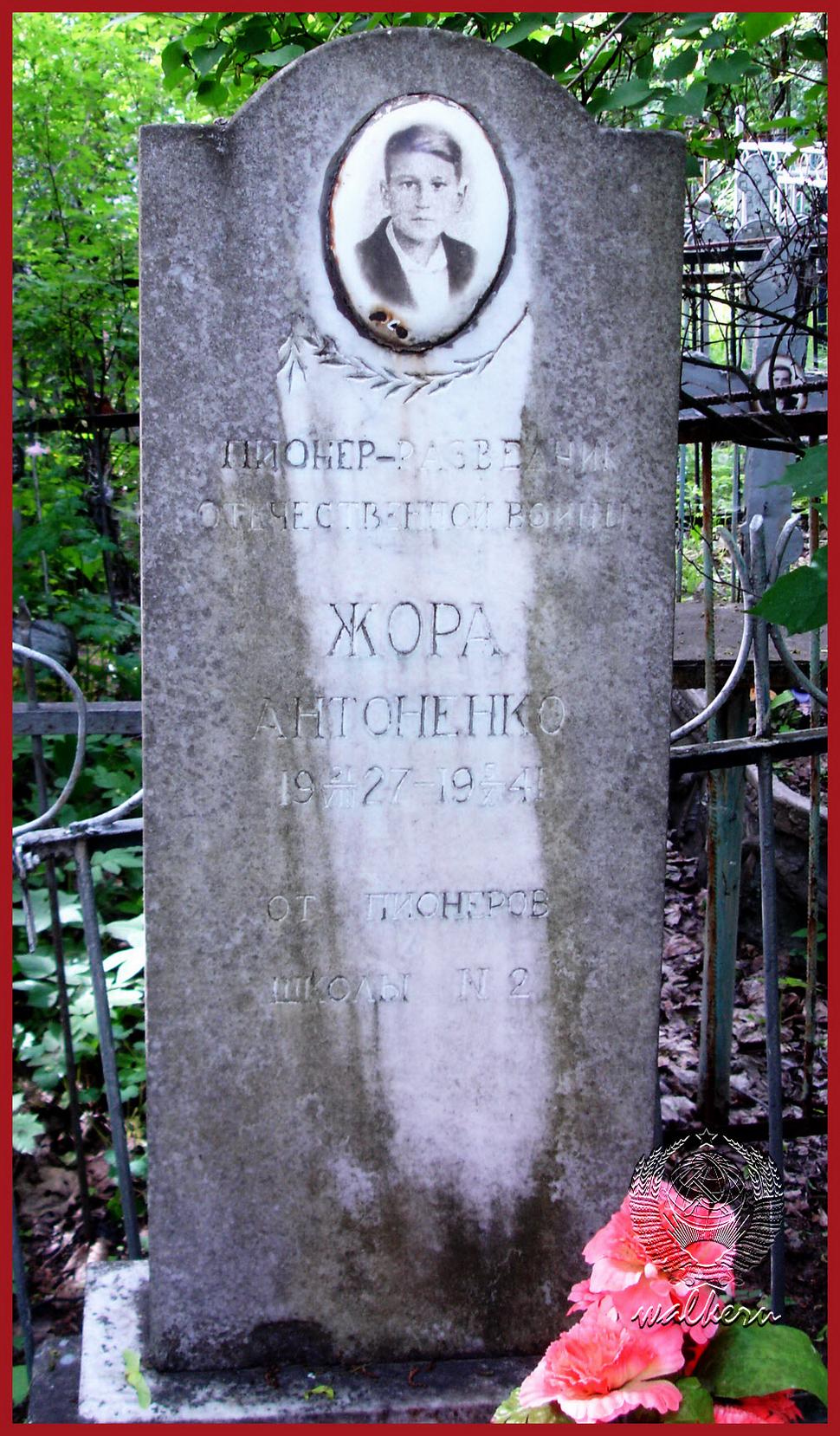 Могила AHTОHEHK0 Г.Ф на кладбище в Мартышкино