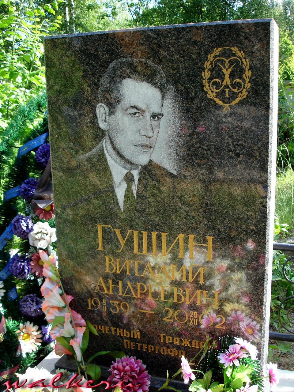 Могила Гущина В.А. на Ново-Троицком кладбище