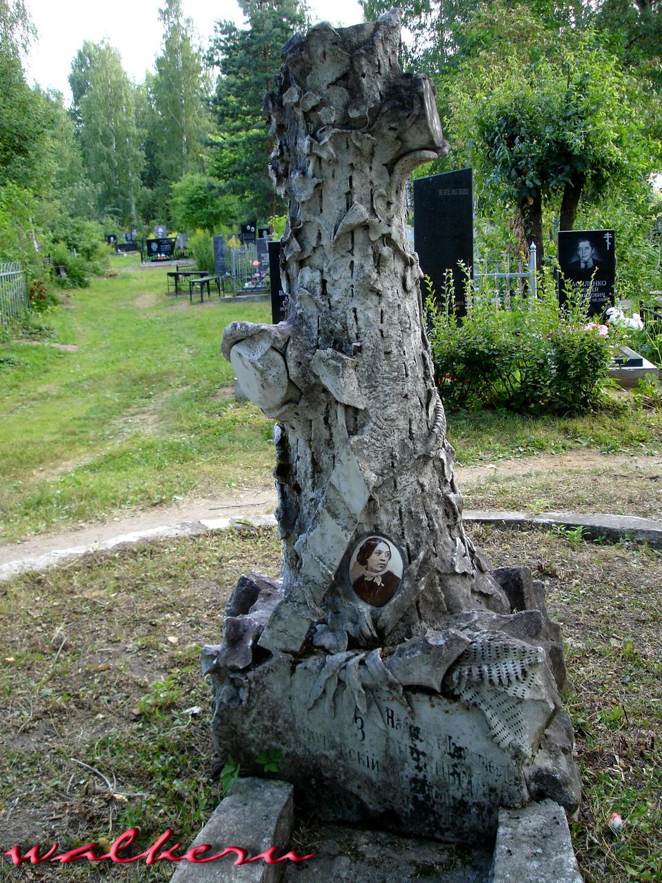 Могила Хвощинской-Зайончковской Н.Д. на Ново-Троицком кладбище