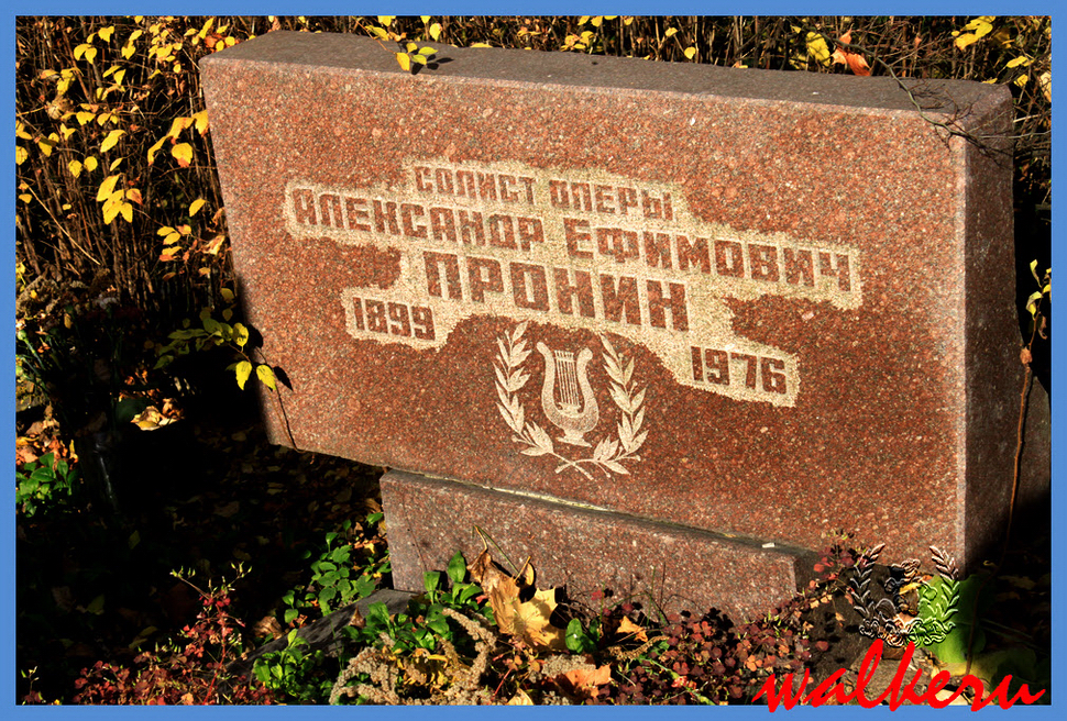 Могила Пронина А.Е. на Ново-Волковском кладбище
