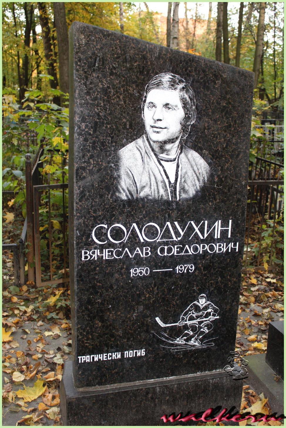 Могила Солодухина В.Ф. на Ново-Волковском кладбище