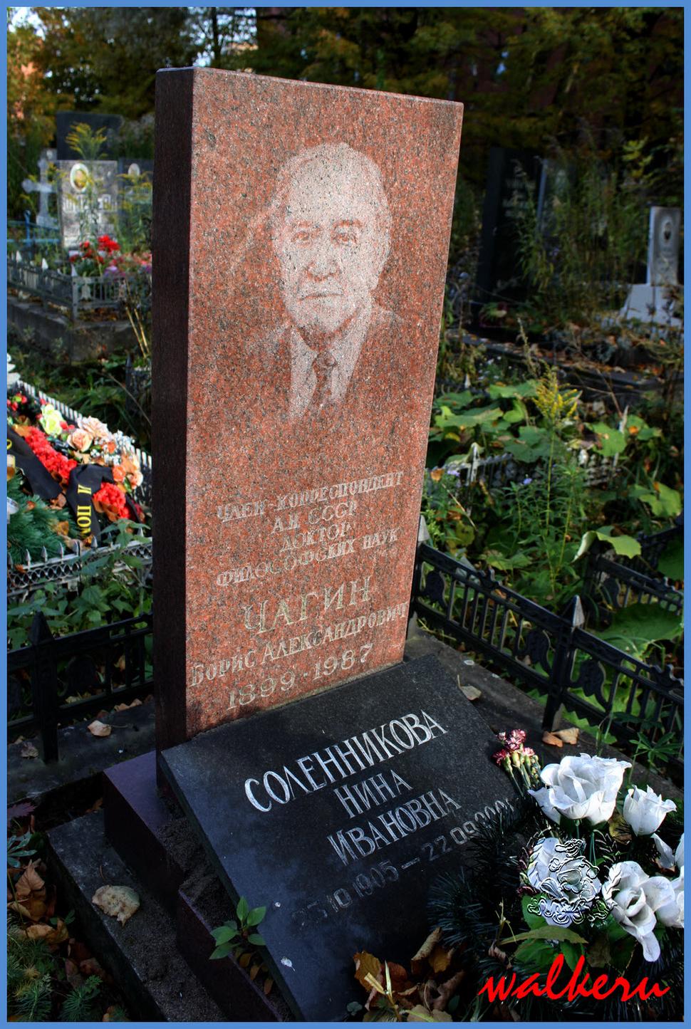 Могила Чагина Б.А. на Ново-Волковском кладбище