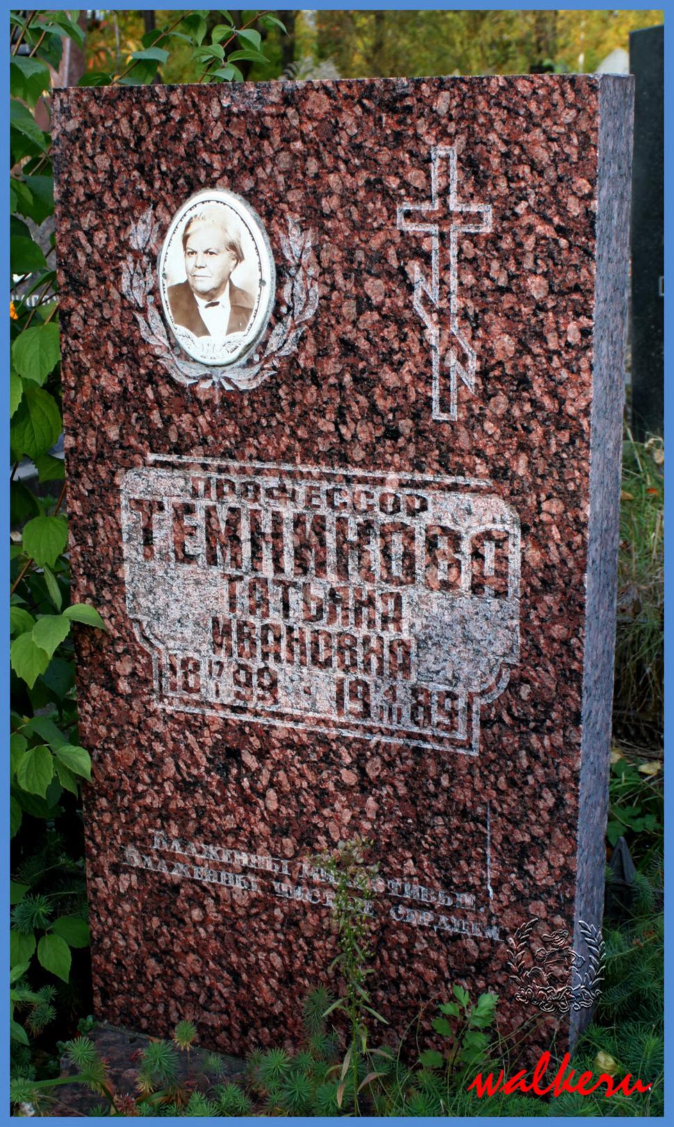 Могила Темникова Т.И. на Ново-Волковском кладбище