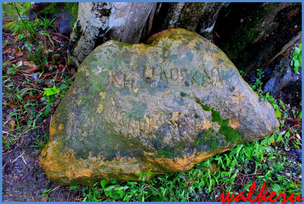 Адлер могила Чарской Л.А.