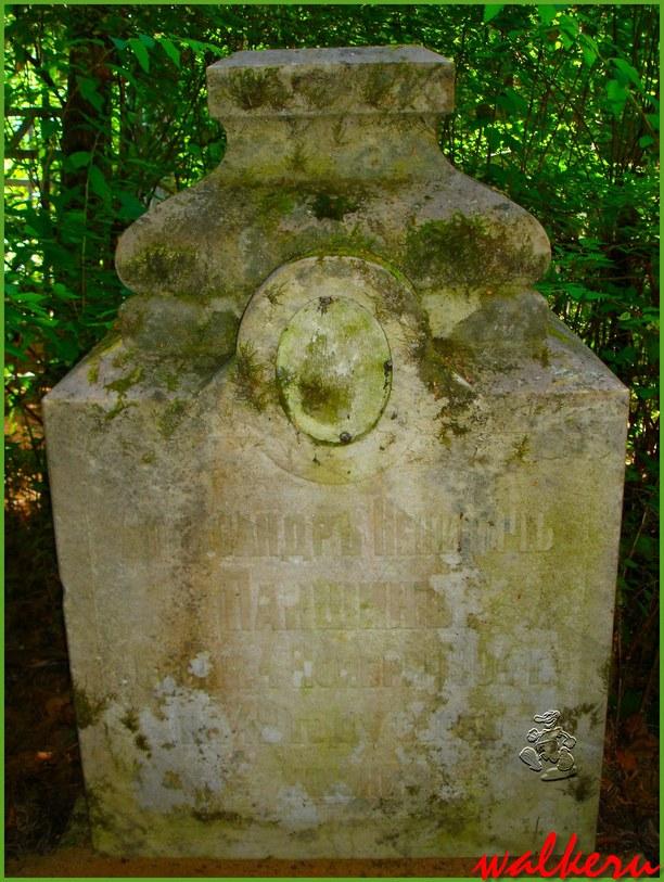 Могила Паншина А.Н. на Сестрорецком кладбище