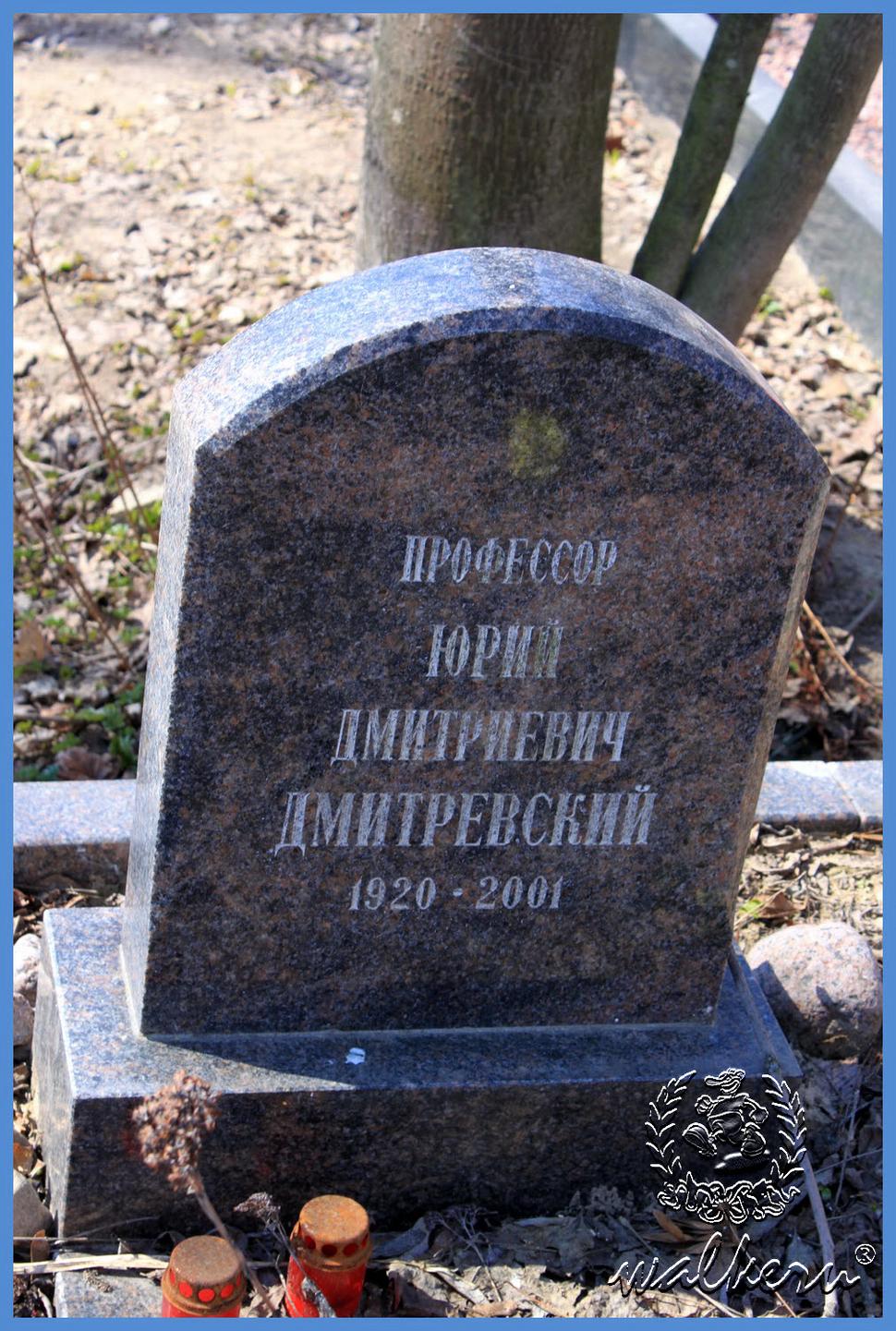 Могила Дмитревский Юрий Дмитриевич на Смоленском кладбище