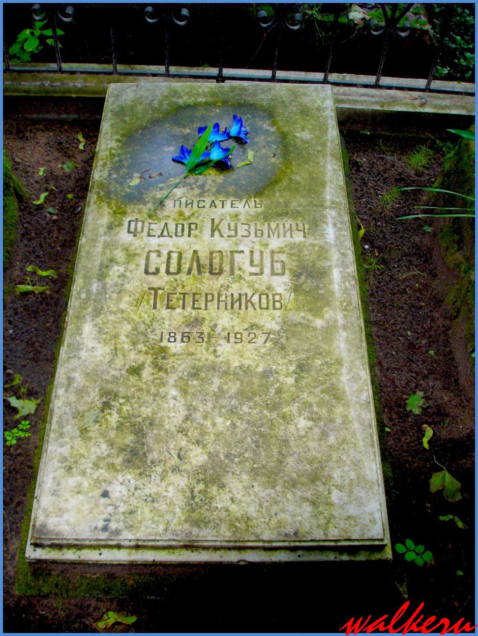 Могила Сологуба Ф.К. на Смоленском кладбище