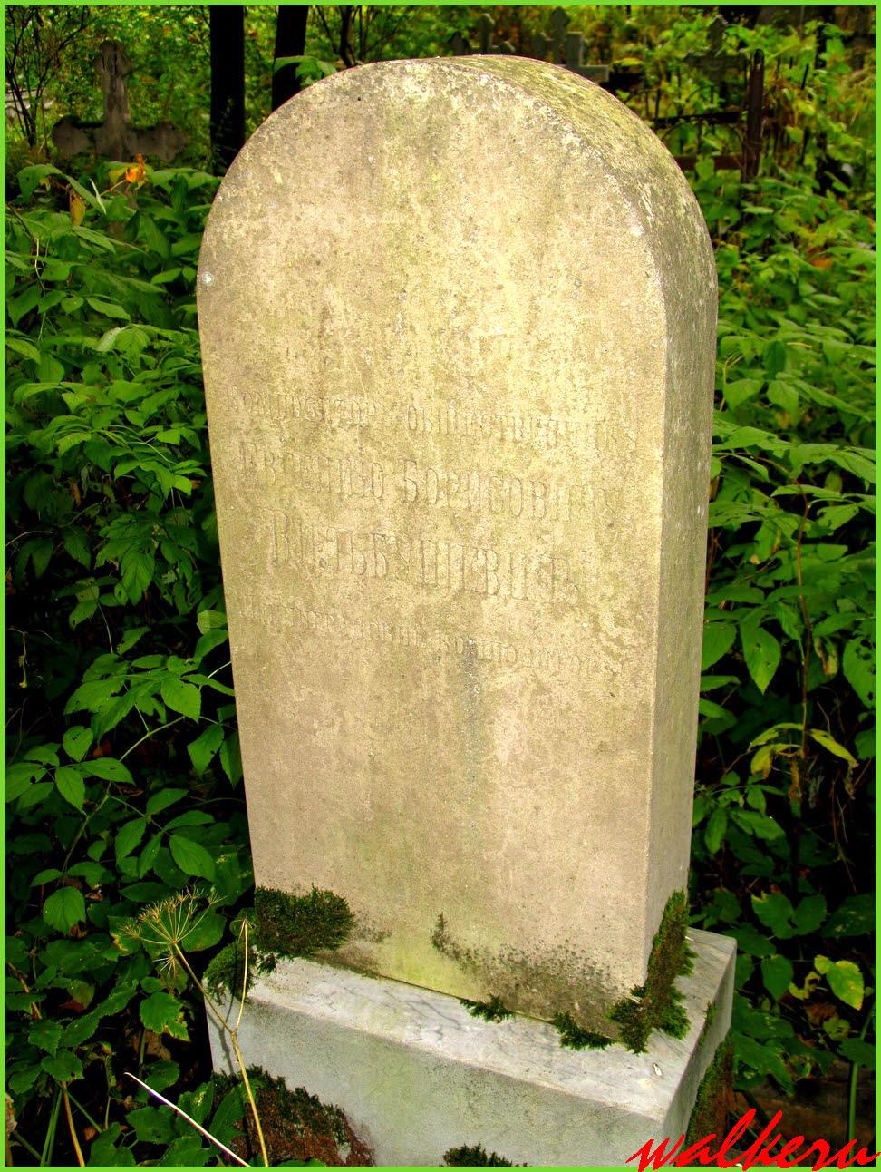 Могила Вильбушевича Е.Б. на Смоленском кладбище