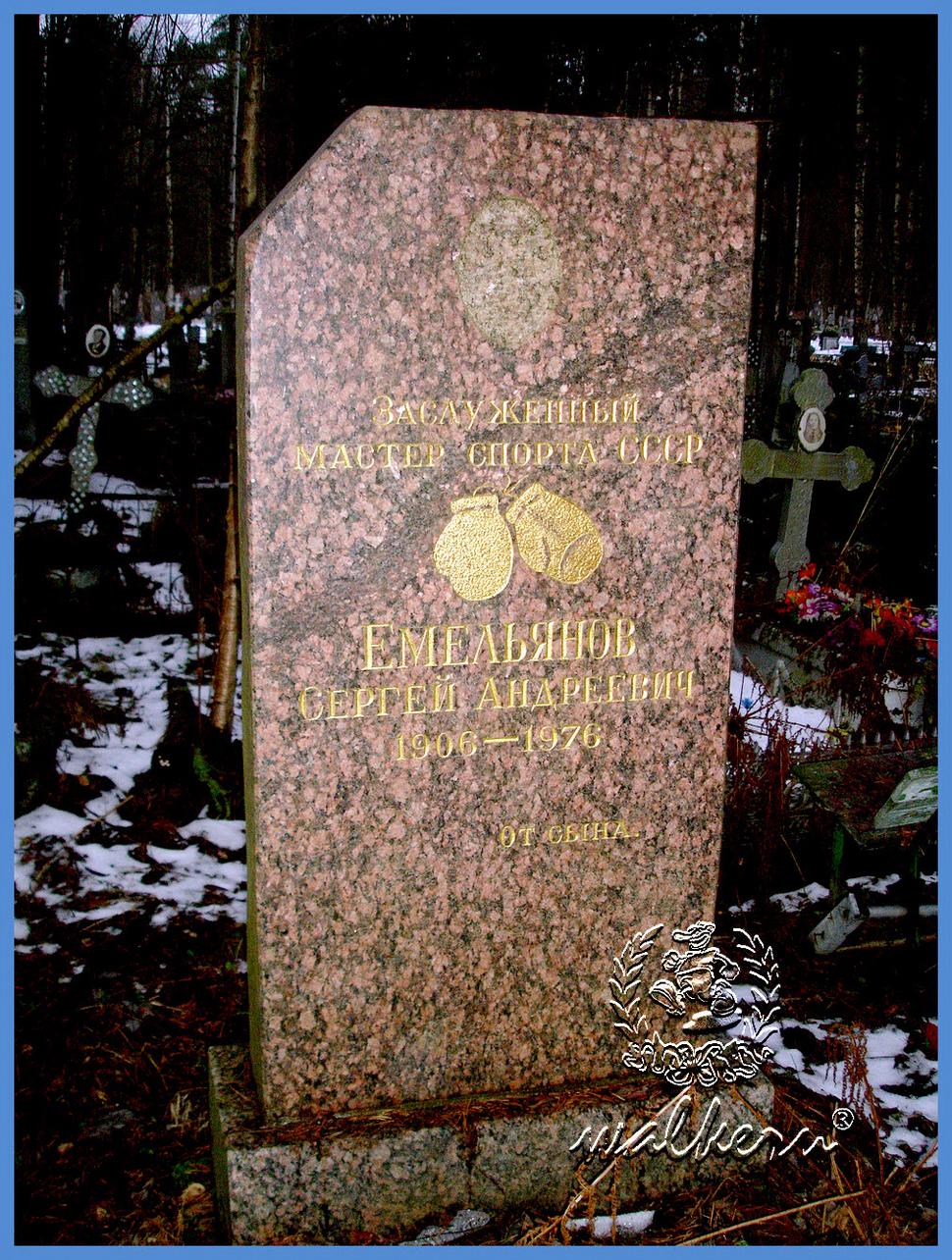Могила Емельянова С.А на Северном кладбище