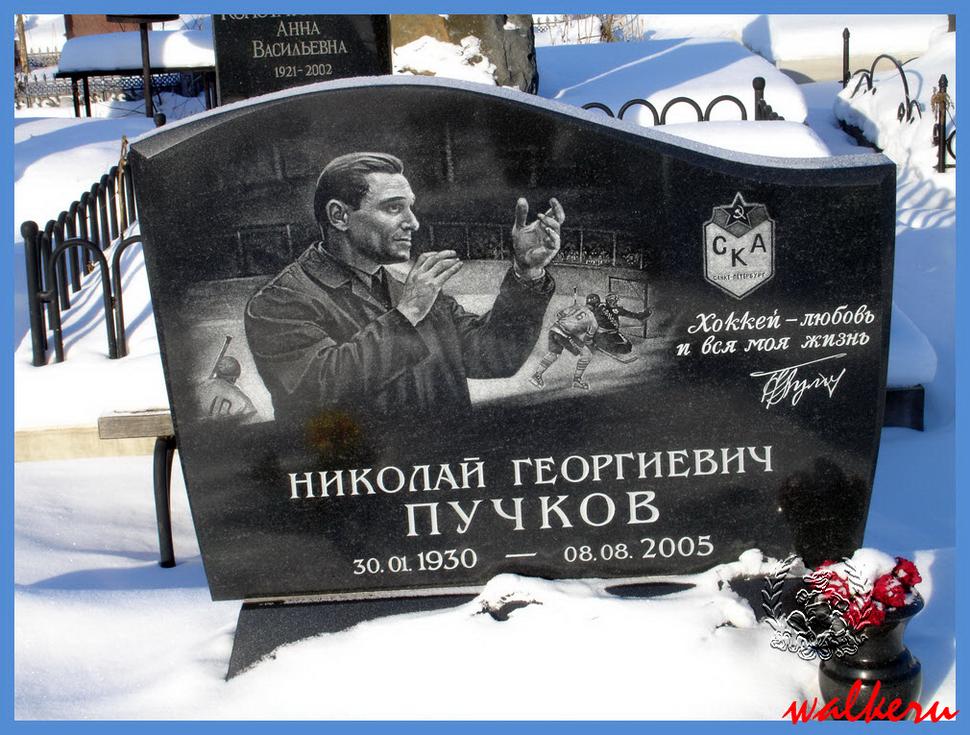 Могила Пучкова Н.Г. на Северном кладбище