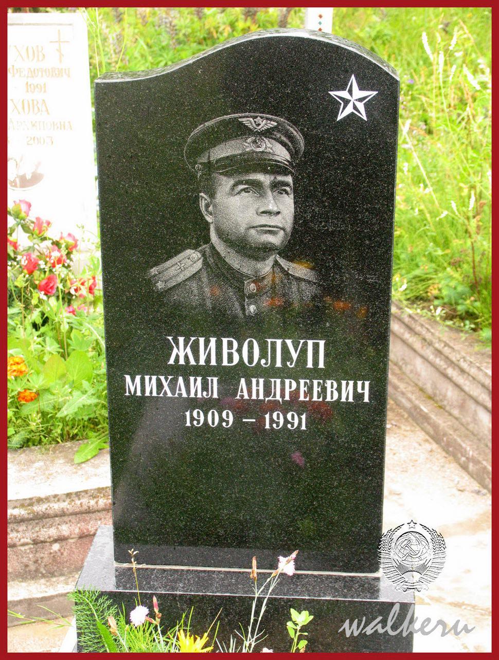 Могила Живолупа М.А. на Южном кладбище